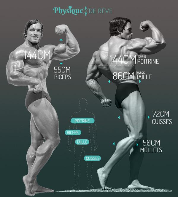 mensurations-muscles-Arnold-Schwarzenegger